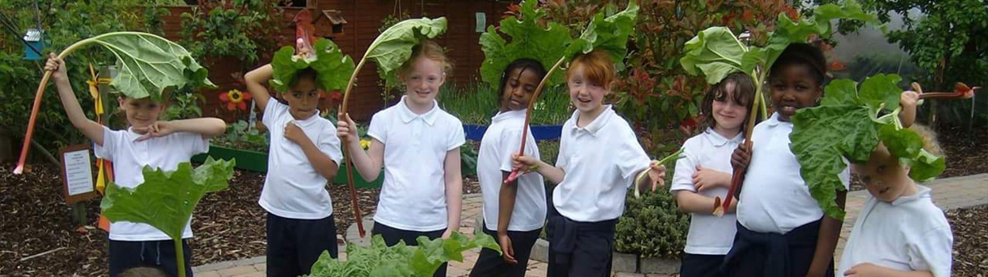 School Tours Children Vegetables Mellowes Banner 1920x540